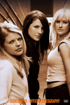 Dixie Chicks - Official Discography