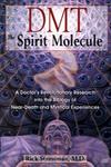 Страссман Рик - ДМТ. Молекула духа [Буджис, (ЛИ), 2019, 320 kbps