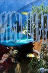 Жизнь под водой (12 серий) / Fish Life